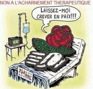 la-rose-meurt